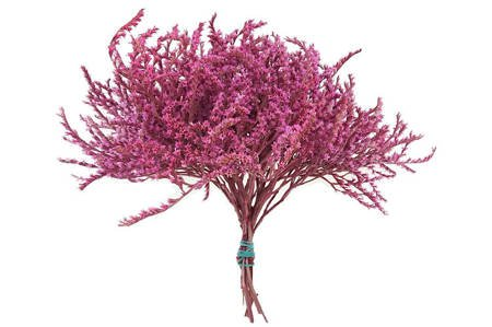 ZATRWIAN TATARSKI KOLOR RÓŻOWY (Goniolimon tataricum) statica suszki ozdobne kwiaty suszone dodatek do stroików i wianków